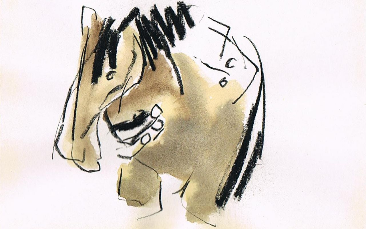 Equus houtskool, aquarel 0p papier
