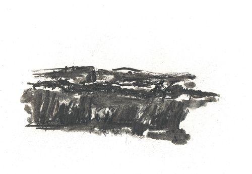 landschap (noordelijk) 2