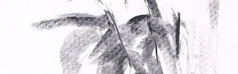 riet 1